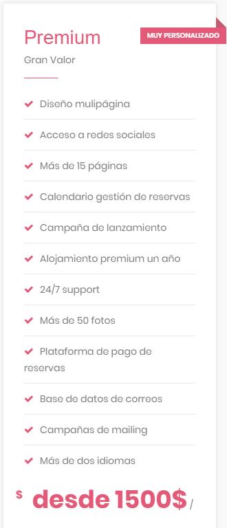 precio Web Plan Premium